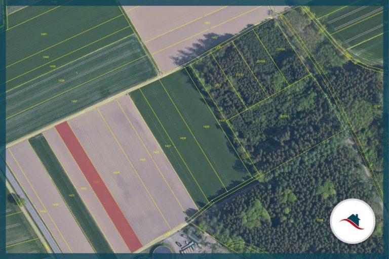 1423_Luftbild-Lageplan