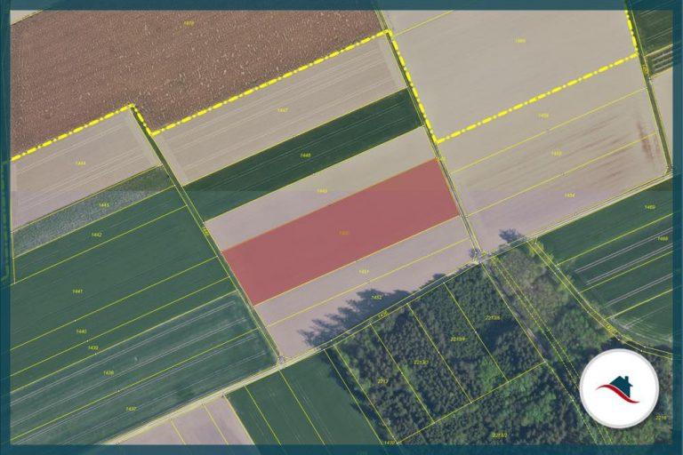 1450_Luftbild-Lageplan