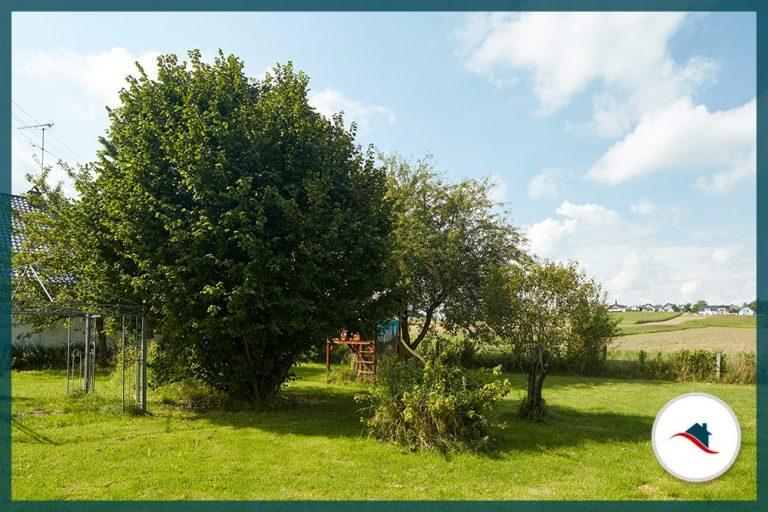 Einfamilienhaus-Niederraunau-Garten